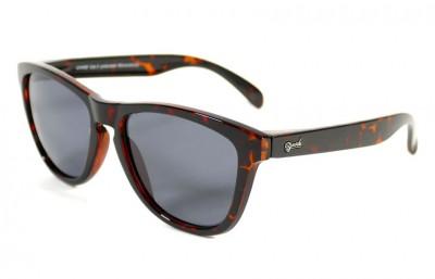 Shiny Tortoise - Grey glasses - Shiny Tortoise